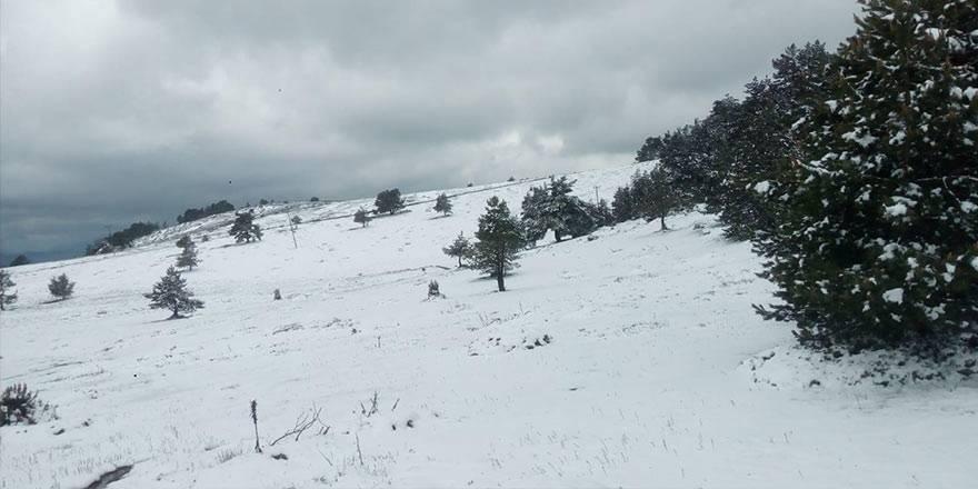 Amasya'nın Taşova ilçesinde Mayıs ayının son günlerinde kar 1