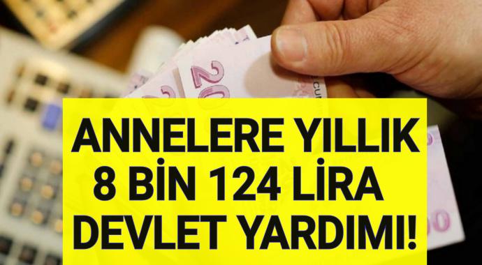Anneler 2020'de 8 Bin 124 Lira Devlet Yardımı