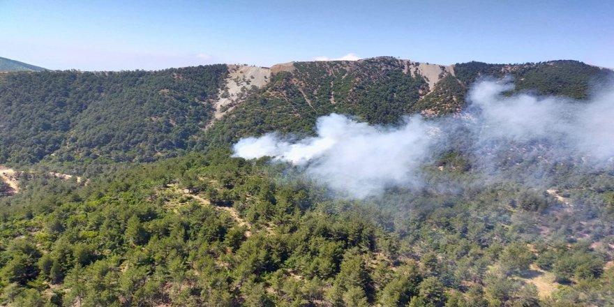 Hatay Belen'de orman yangını