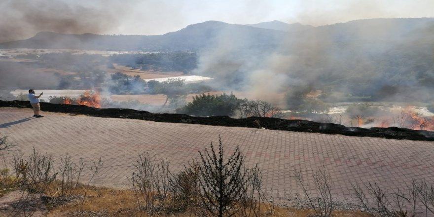 Antalya'da Xanthos Antik Kenti'ni tehdit eden yangın