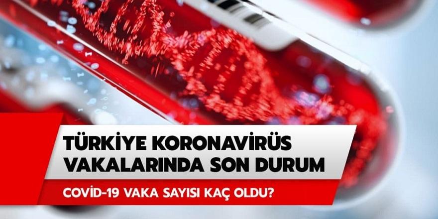 Sağlık Bakanı Koca: 1 Temmuz Koronavirüs tablosunu paylaştı! Bugün kaç ölüm, kaç vaka var?