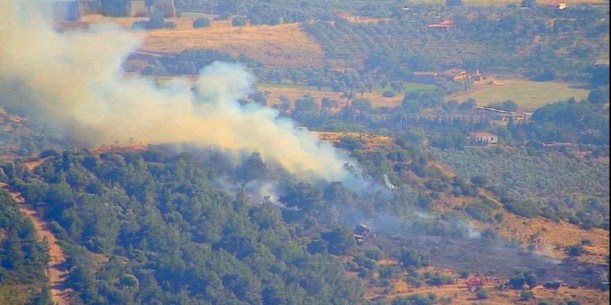 İzmir Foça'da çıkan orman yangını kısa sürede kontrol altına alındı