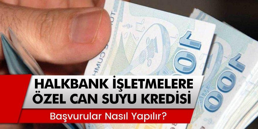 Halkbank'tan İşletmelere Özel Can Suyu Destek Kredisi Başvuruları Nereden, Nasıl Yapılır?