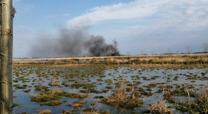 Samsun Simenit Gölü'nde yangın: Çok sayıda hayvan telef oldu
