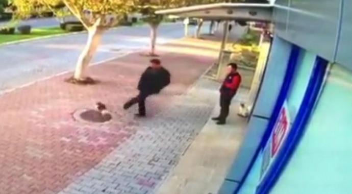 Antalya'da mama bırakılmasına tepki gösterip kedileri tekmeledi