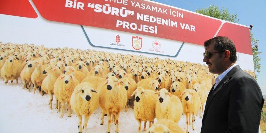 Sivas Valiliği tarafından devlet bankasının desteği !