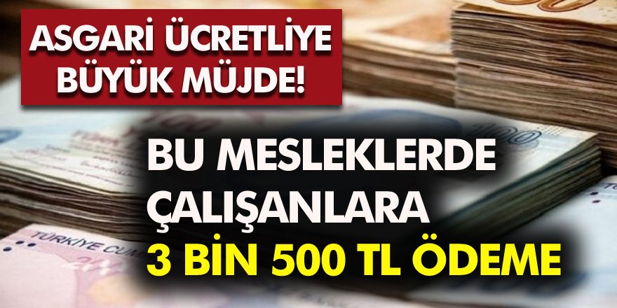 Asgari Ücretlilere Müjde! Bu Mesleklerde Çalışanlara 3 Bin 500 Lira Maaş...