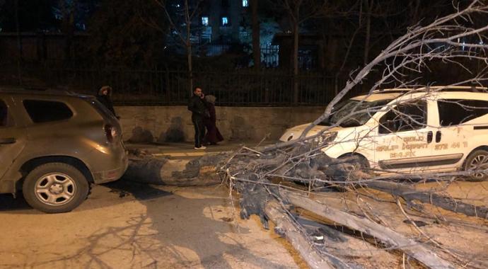 Ankara'da ağaç minibüsün üstüne devrildi