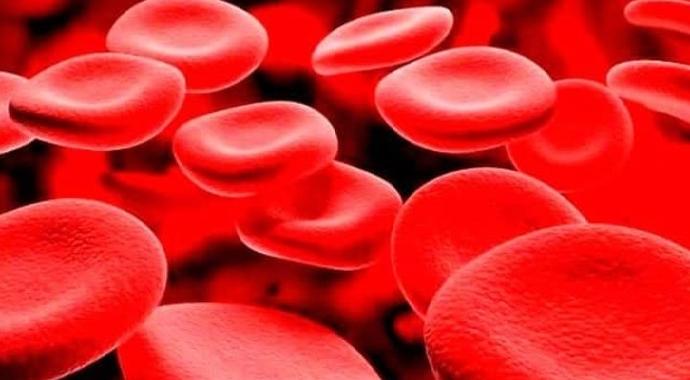 Kansızlık (anemi) nedir? Doğru bilinen yanlışlar sizi anemiye sürüklemesin