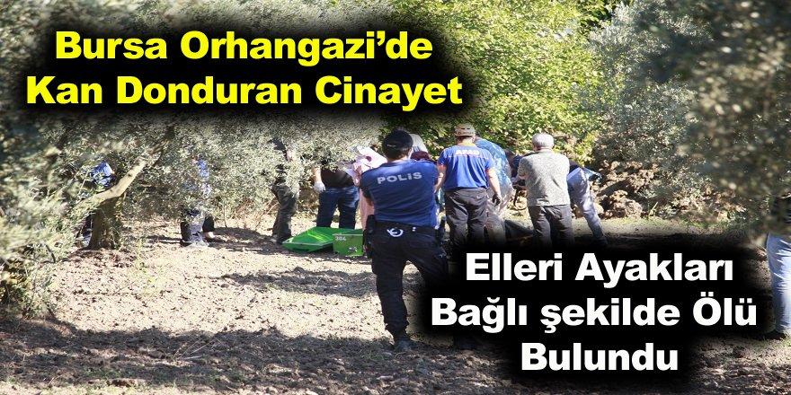 Bursa Orhangazi'de kan donduran cinayet elleri ve ayakları bağlı öldürülmüş
