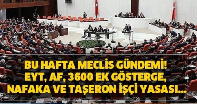 Meclis gündemi! EYT, af, 3600 ek gösterge, nafaka ve taşeron işçi yasası...