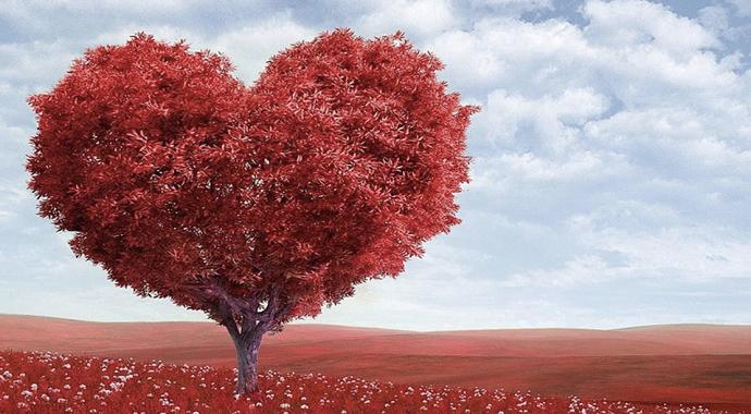14 Şubat'ta hediye talep etmek ilişkiyi olumsuz etkileyebilir
