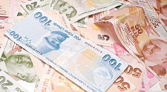 Devlet başvuranlara 173 bin lira hibe desteği