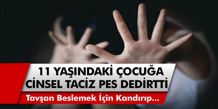 Trabzon'da akıl almaz olay! 11 yaşındaki çocuğa marulla tavşan beslemek için kandırıp, cinsel tacizde bulundu…