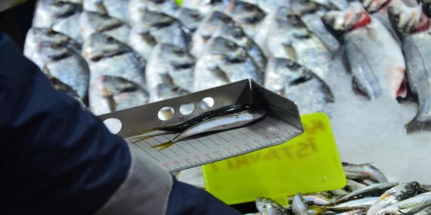 Balık sezonunun açılması denetimleri de beraberinde getirdi