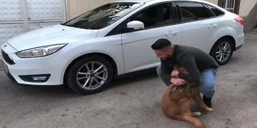 Askerden izne gelen sahibini kapıda karşılayan köpeğin sevincini görenler şaşkına döndü!