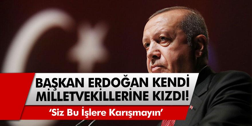 Erdoğan kendi milletvekillerini böyle uyardı: Siz bu işlere karışmayın
