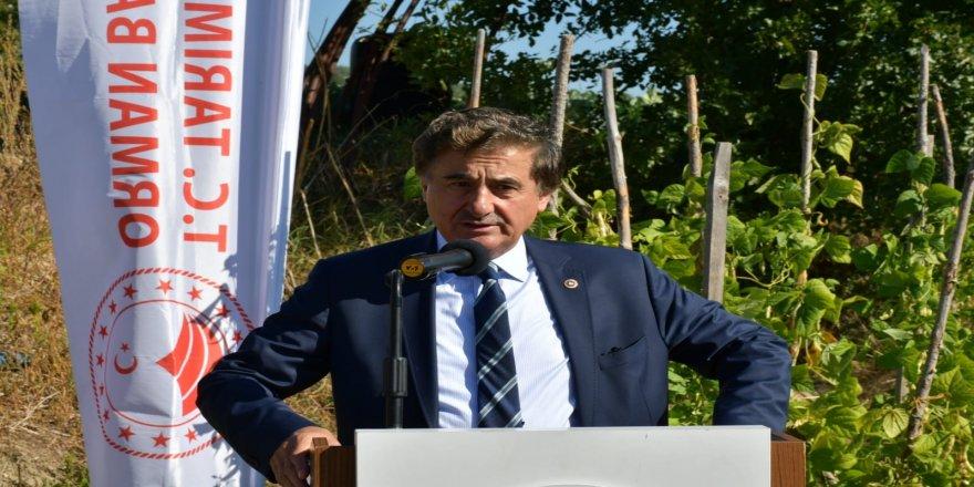 Orman Genel Müdürlüğü tarafından, 100 dönümlük alanda Aromatik Bitki Şehri kuruldu