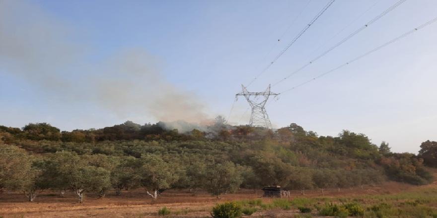 Antalya Manavgat'da, son 3 gün içinde 6 orman yangını meydana geldi