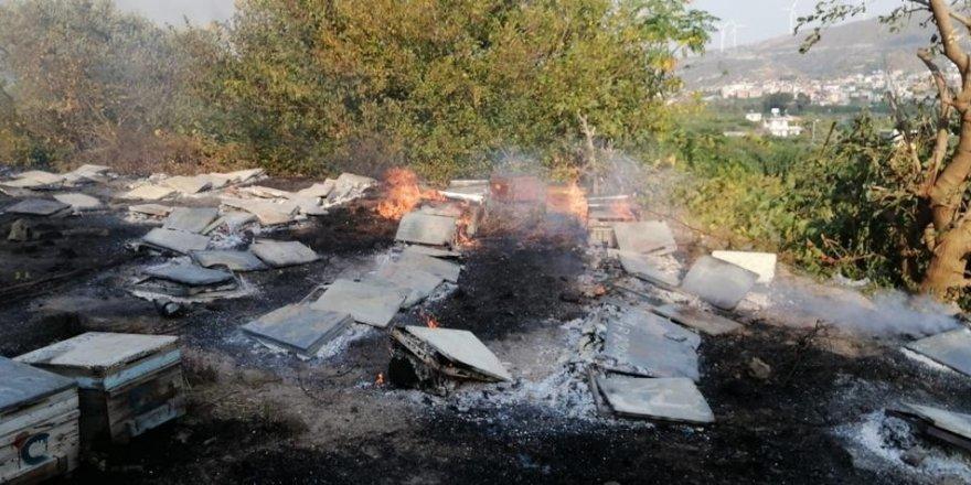 Hatay Samandağ'daki yangın sigara izmaritten çıkmış