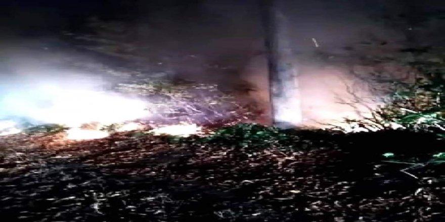 Ordu Gürgentepe'de ormanlık alanda yangın