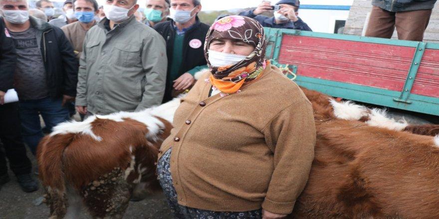 Orman Bakan Yardımcısı, Bolu'daki afetzedeleri ziyaret etti