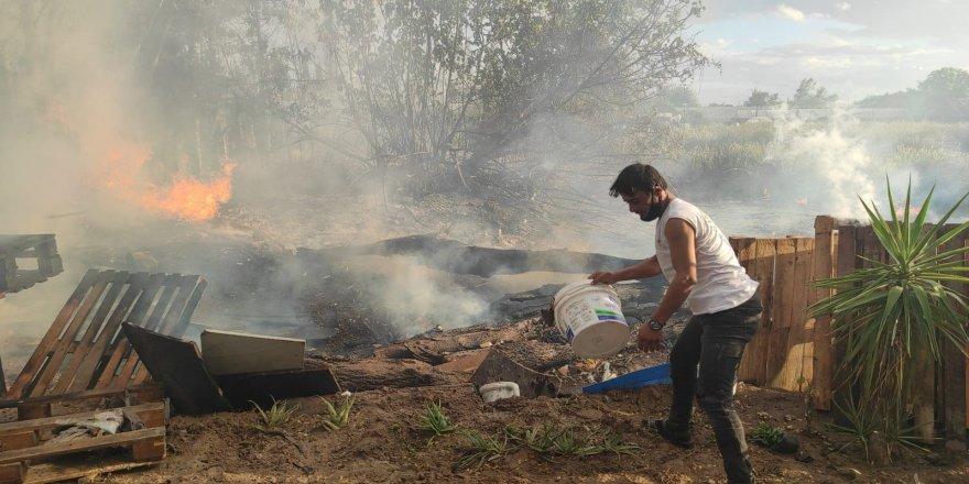 Antalya Muratpaşa'da korkutan palmiye yangını