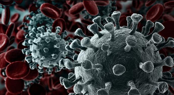 Japonya'da virüs'ten 1 kişi daha hayatını kaybetti