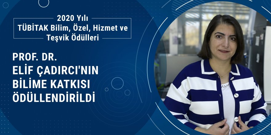 """Tıp Fakültesi Öğretim Üyesi Prof. Dr. Elif Çadırcı üstün nitelikli çalışmaları"""" nedeniyle Teşvik Ödülü aldı!"""