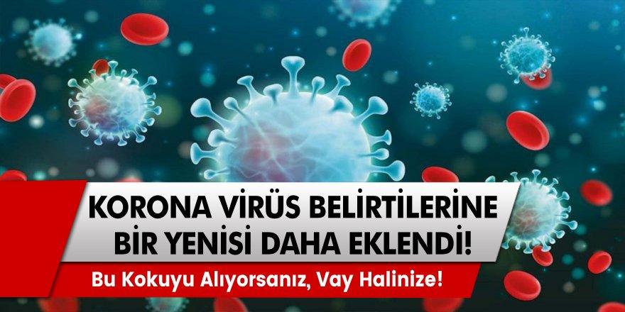 Koronavirüs için Önemli Uyarı! Bu Kokuyu Duyuyorsanız, Vay Halinize!
