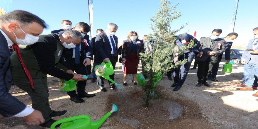 """""""24 Kasım Öğretmenler Günü Hatıra Ormanı"""" için 30 bin fidan toprakla buluşturuldu"""