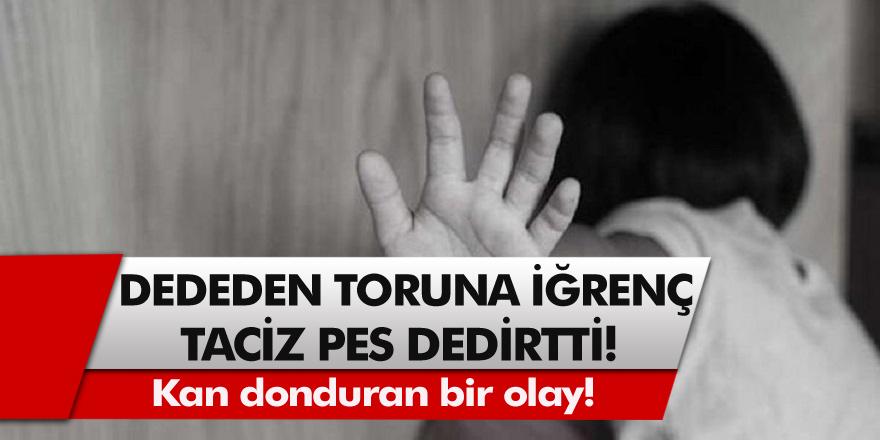 Dede'den Toruna Kan Donduran Taciz! Dedemle Oynamam Çünkü Sözünden Sonra Aile Şüphelendi Ve….