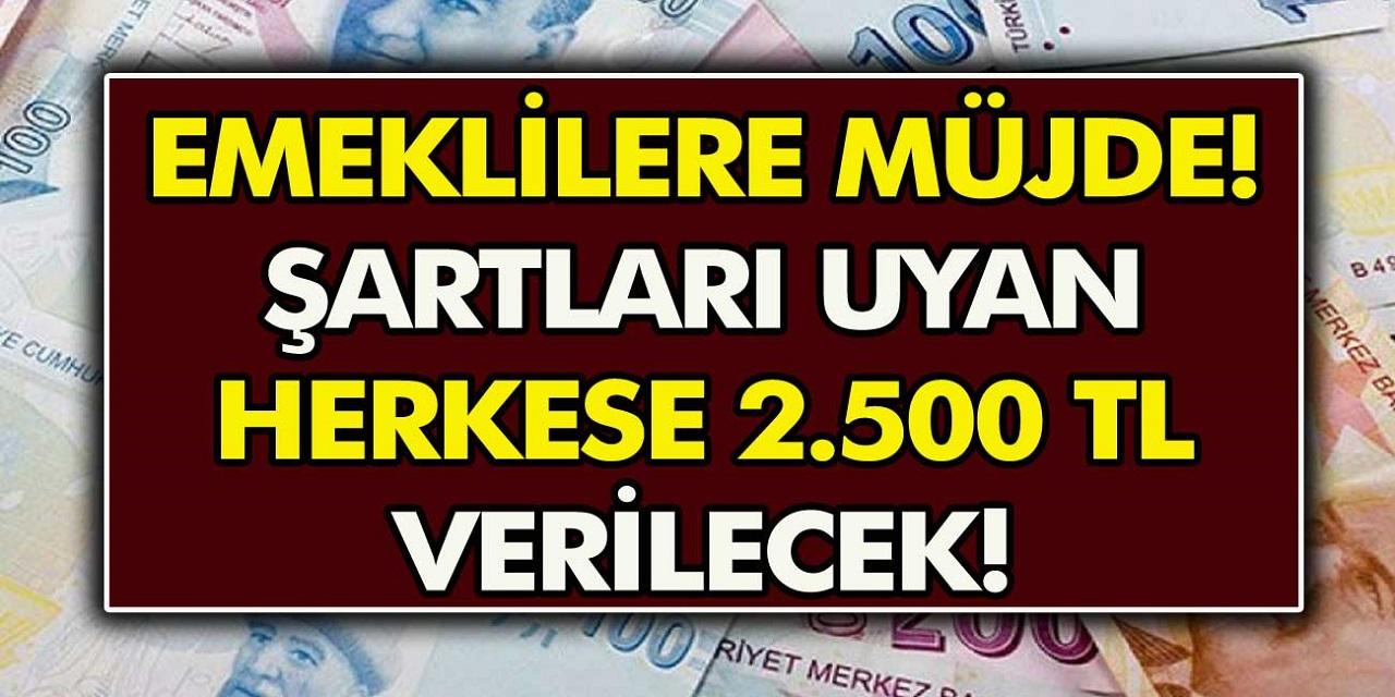 Son Dakika: Emeklilere 2500 TL ek ödeme yapılacak! Bankalardan anında ödeme alınabilecek!