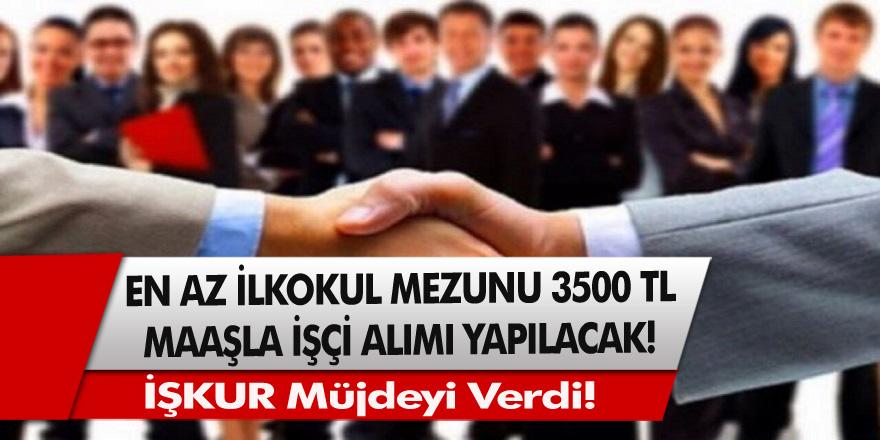 İŞKUR'dan müjde! En az ilkokul mezunu vatandaşlar arasından 3500 TL maaşla 2441 temizlik personeli alınacak…
