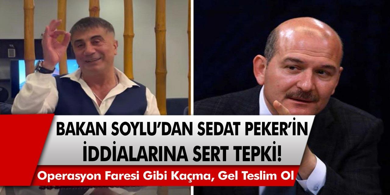 Bakan Soylu'dan Sedat Peker'in iddialarına sert tepki: Gel teslim ol, Operasyon faresi gibi kaçma!