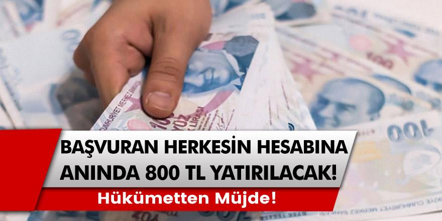 Hükümet kanadından müjde! 800 TL ödeme hesaplara anında yatacak: İki ödeme aynı anda verilecek…