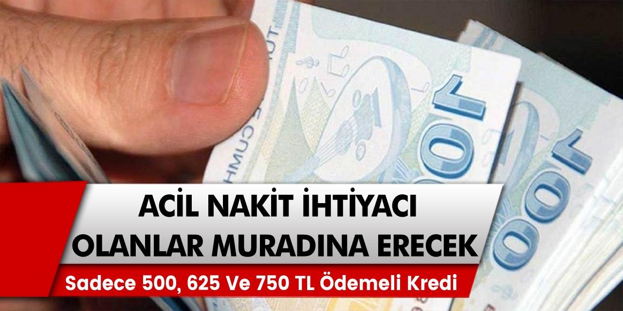 Sadece 500, 625 ve 750 TL ödemeli kredi fırsatları açıklandı: Ziraat Bankası, Vakıfbank, Türkiye Finansbank…