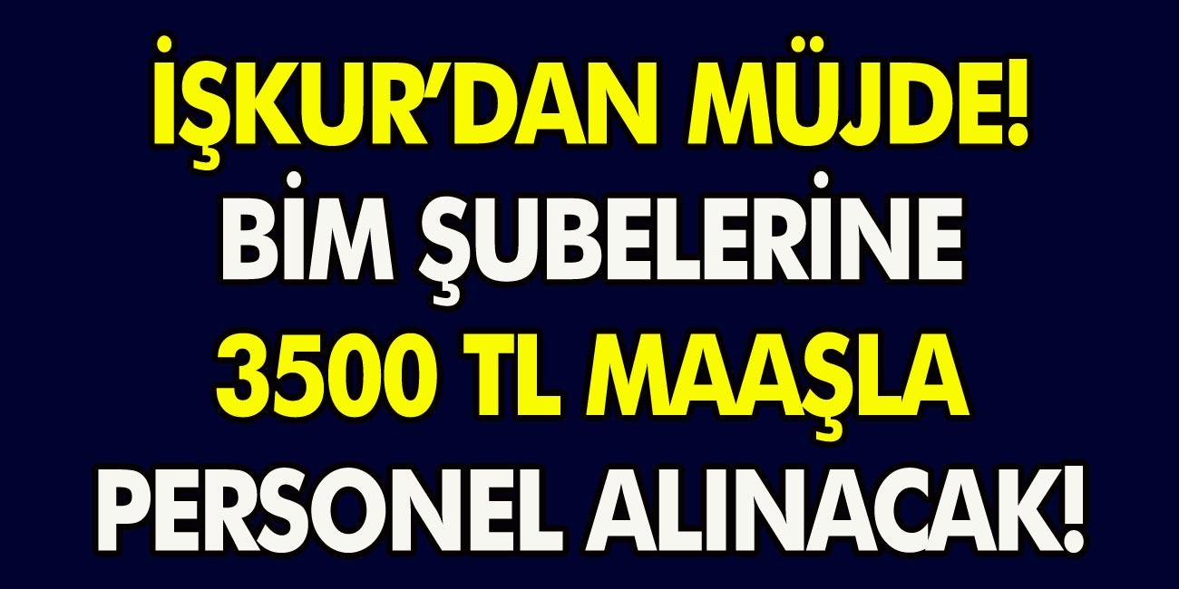 BİM marketlerinde istihdam alanı için İŞKUR'dan şok açıklama: 3500 TL maaş ile personel alımları başladı. İŞKUR başvuru süreci…