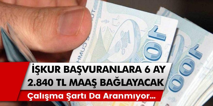 İŞKUR kanadından müjde: Başvuranlar için tam 6 ay boyunca 2840 TL maaş gelecek! Maaşı almak için illa çalışma şartı da aranmıyor…