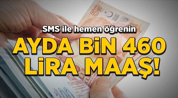 SMS'le Aylık 1.460 TL Ödeme Nasıl Alınır? Nasıl Başvuru Yapılır?