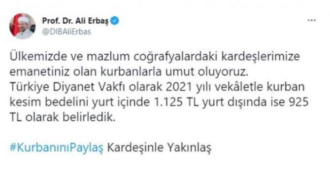 -415.jpg